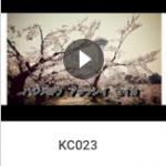 KC023