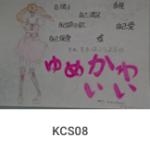KCS08