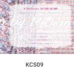 KCS09
