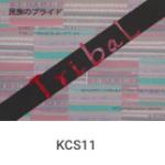 KCS11