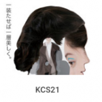 KCS21